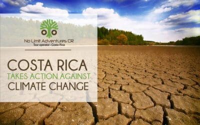 Costa Rica takes action against climate change