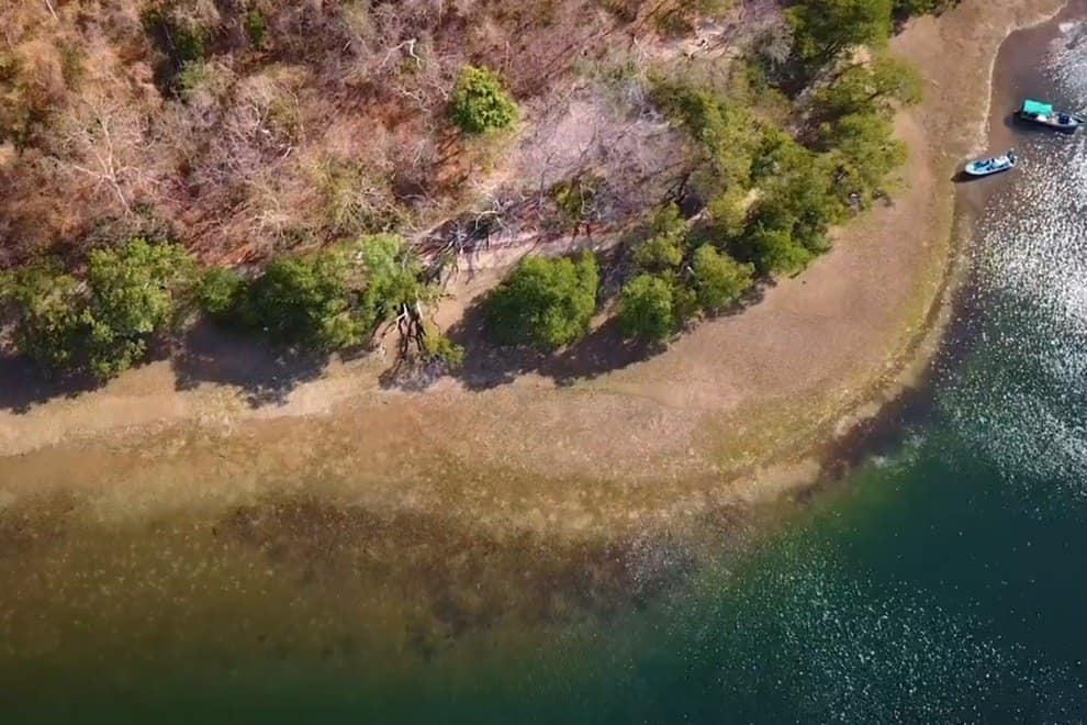 costa rica marine life santa elena bay coast